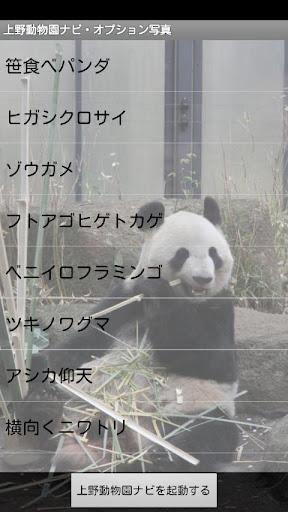 上野動物園ナビ 動物カメラオプション(1)