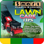 Best Lawn Care Tips - FREE