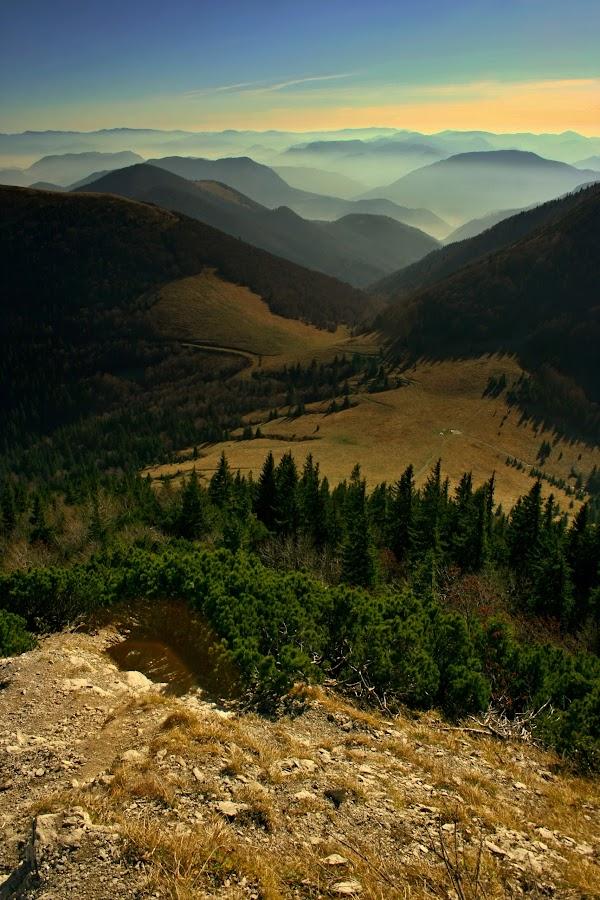 Malá Fatra by Katka Kozáková - Landscapes Mountains & Hills ( forests, mountains, autumn, valleys, horizons,  )