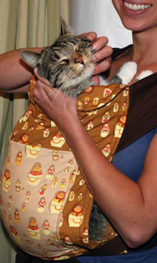 Cat in pocket Live Wallpaper