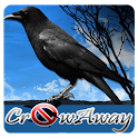 Crow Away icon