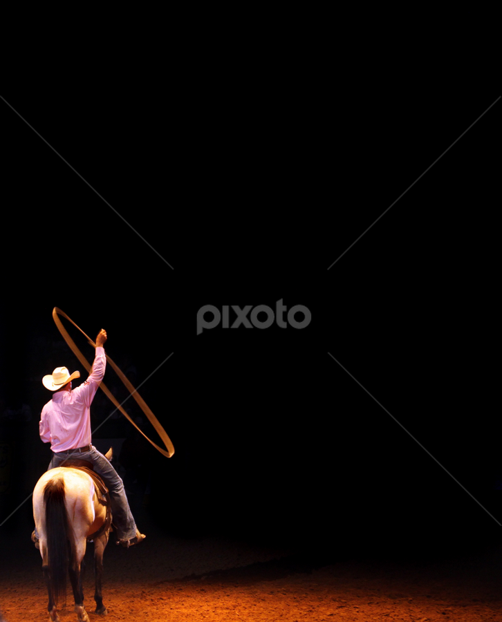 The Rodeo by Oona Tully - Sports & Fitness Rodeo/Bull Riding ( fortworth, cowboy, texas, lassoo, rodeo )