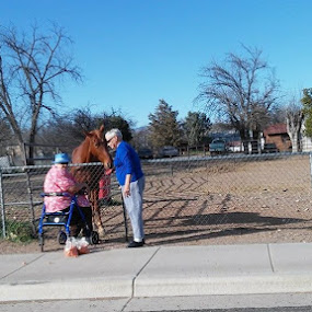 Two ladies feeding carrots to a horse on a beautiful 70 degree day in AZ. by Chuck Cross - People Street & Candids ( improving mood, moods, red, love, the mood factory, inspirational, passion, passionate, enthusiasm )