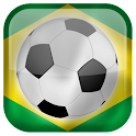 World Cup 2014 Flags Live WP icon