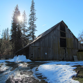 Centennial Barn by Robin Nanni - Landscapes Mountains & Hills