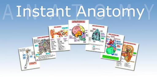 Instant Anatomy Pdf