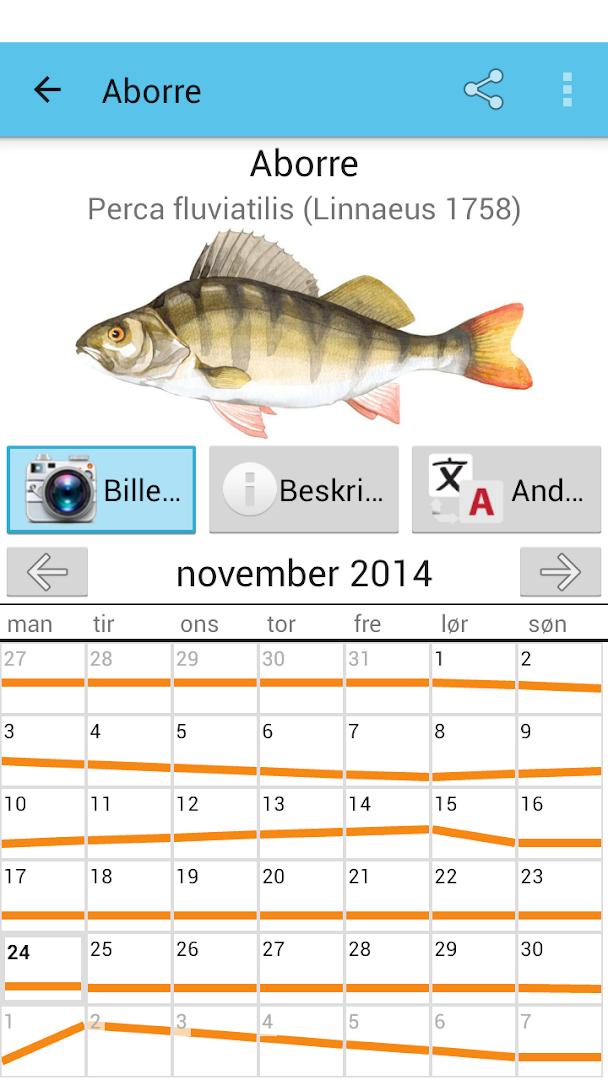 клев рыбы прогноз на неделю в спб