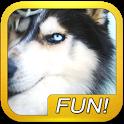 Wolf Howl Sound Button icon