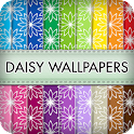 Daisy Wallpapers Patterns icon