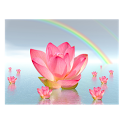 Lotus In Water icon
