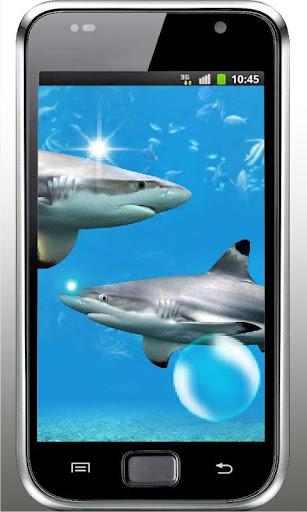 Sharks HQ live wallpaper