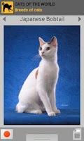 Screenshot of Cats of the world (Premium)