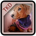 The Knitted Dachshund icon