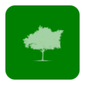 FamTree (My Family Tree)