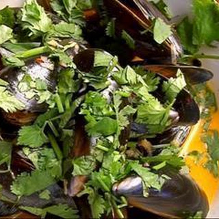 Mussels With Chipotle Cream And Fresh Coriander.