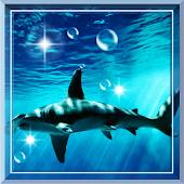 Shark Predator live wallpaper
