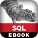 SQL Pocket Guide, 3E