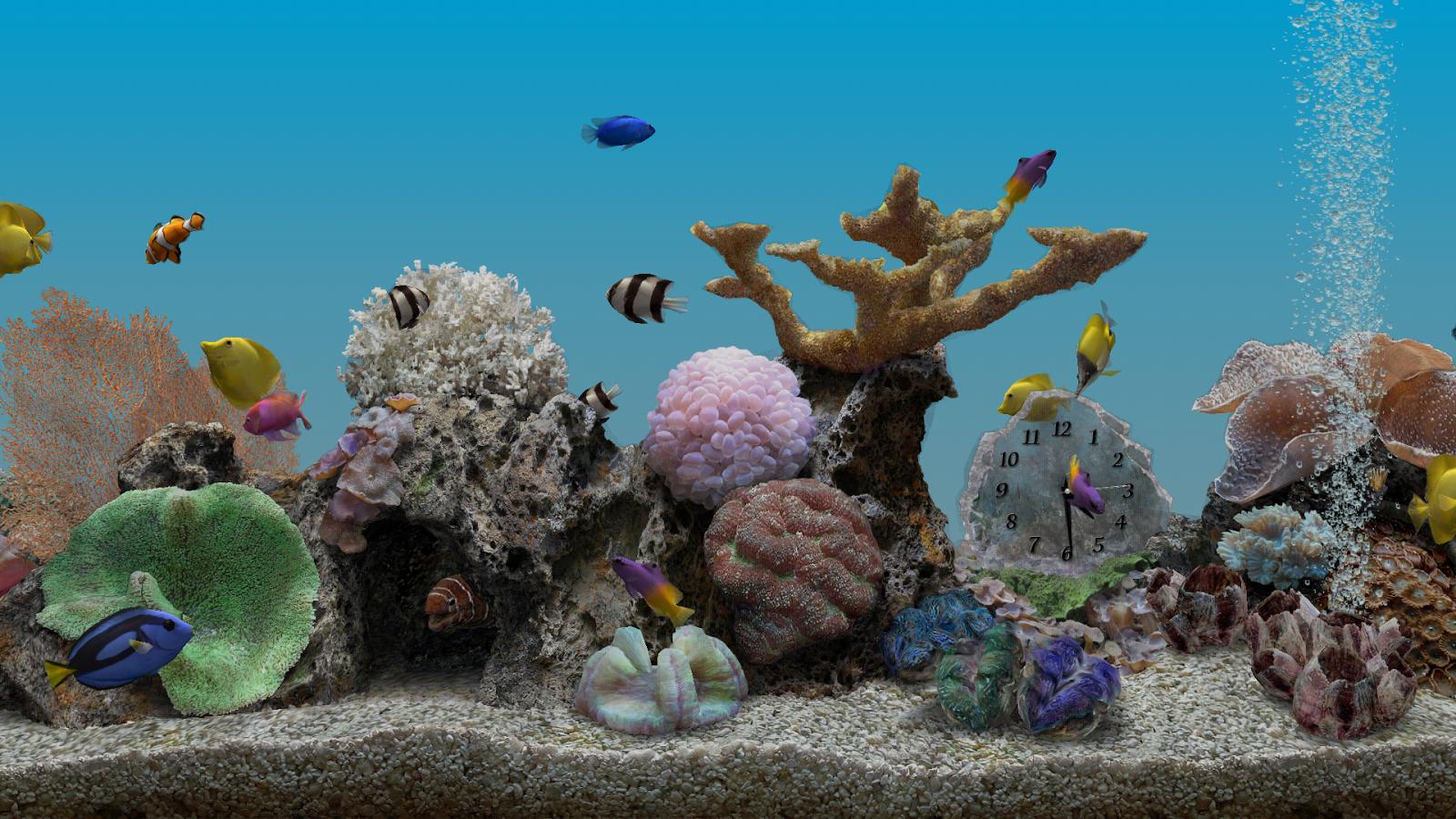 Marine aquarium 3 2 pro android apps on google play for Marina aquarium