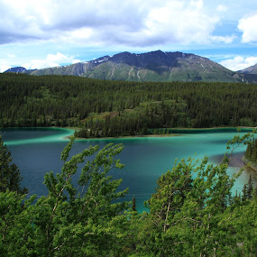Emerald Lake by Rhonda Silverton - Landscapes Mountains & Hills ( water, mountain, canada, yukon, emerald, lake, emerald lake,  )