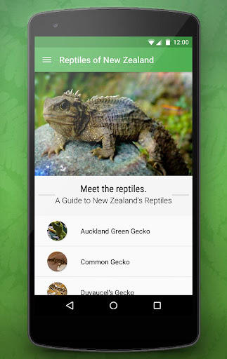 Reptiles of New Zealand