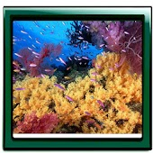 Aquarium Mega Live Wallpaper