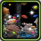 Aquarium Gold Fishes LWP