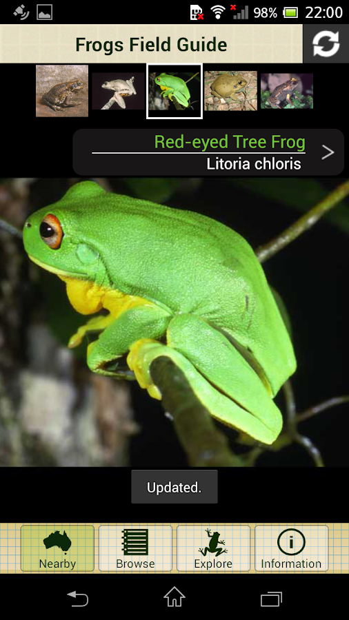 Frogs Field Guide- screenshot