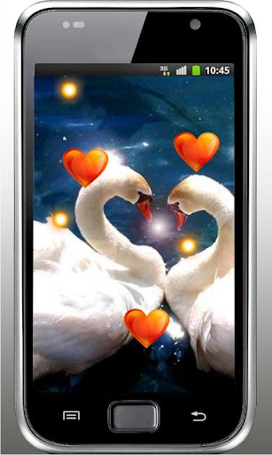 Valentine Birds live wallpaper