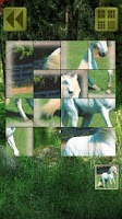 Screenshot of Sliding Puzzle: Animals