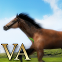 VA Horse Wallpaper