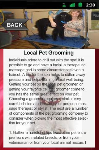 Local Pet Grooming