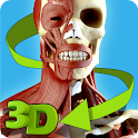Easy Anatomy 3D(learn anatomy) logo