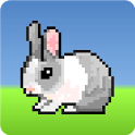 Jumpy Bunny icon
