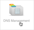DNS Management button