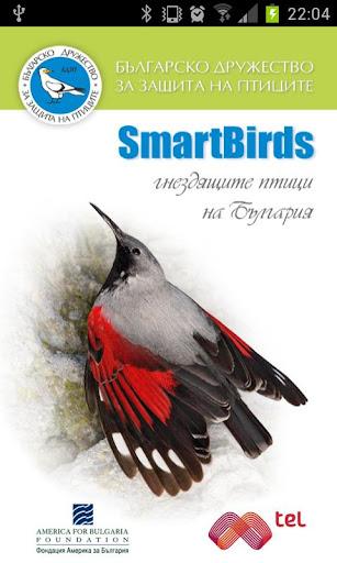 SmartBirds