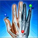 IMAIOS e-Anatomy logo