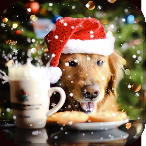 狗狗圣诞壁纸 個人化 App LOGO-APP試玩