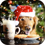 dog christmas wallpaper