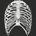 Gray's Anatomy Mobile