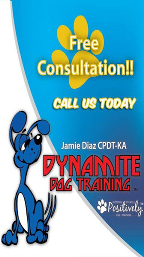 Dynamite Dog Training