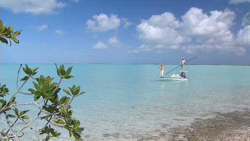 A fishing trip in the Bahamas.