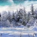 Live Wallpaper Snowfall