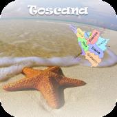 Spiagge Italia Toscana Free
