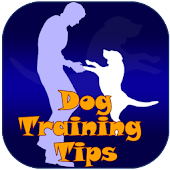 Dog Training Tips & Tricks