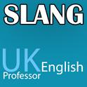 Slang - UK English Professor icon