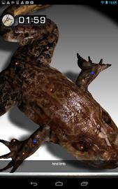 Froguts Frog Dissection Screenshot 14