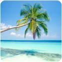 Caribbean Vacation Pictures icon