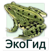 EcoGuide: Russian Amphibians