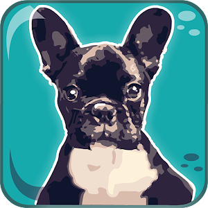Dogs Breeds: Quiz for PC and MAC