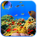 Fish swimming icon